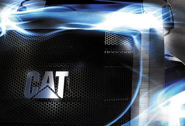 CAT_Thumb2